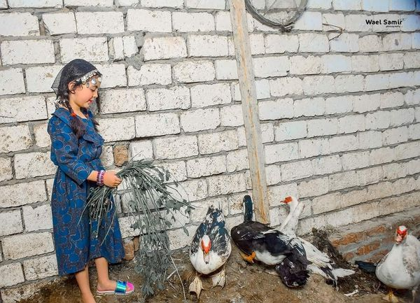 فوتوسيشن أطفال المنيا