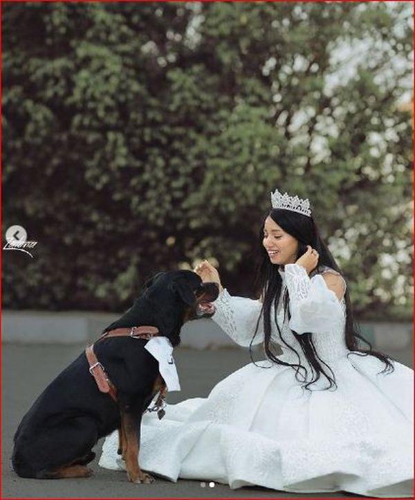 هبه مبروك تتزوج من كلب