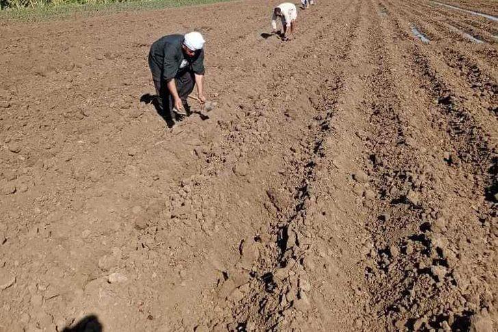 الفلاحين والمزارعين