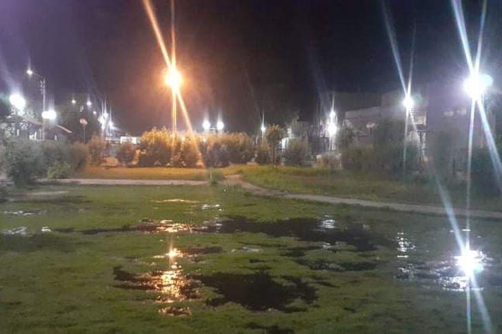 مجلس مدينة أسوان يغرق الحدائق والمتنزهات