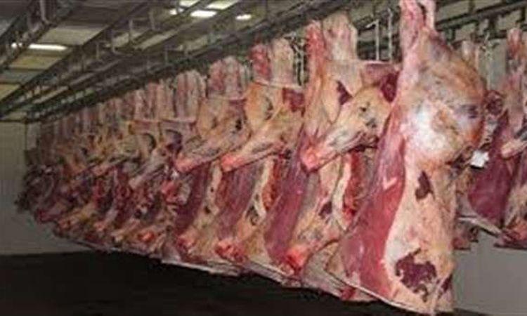 أسعار اللحوم اليوم الأربعاء 15 يناير