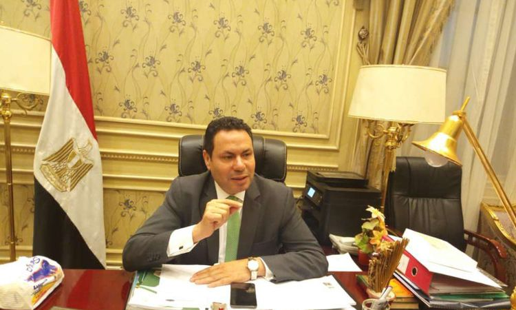 النائب هشام الحصري رئيس لجنة الزراعة والري بمجلس النواب