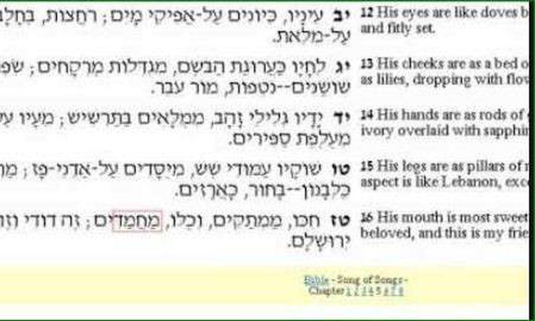ذكر النبى محمد في التوراة