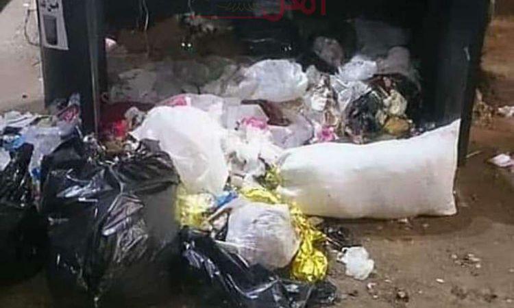صناديق القمامة الذكية بطنطا